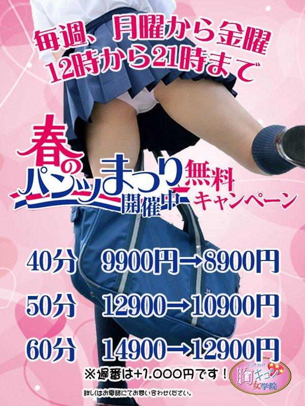 胸キュン☆春のパンツ祭り!